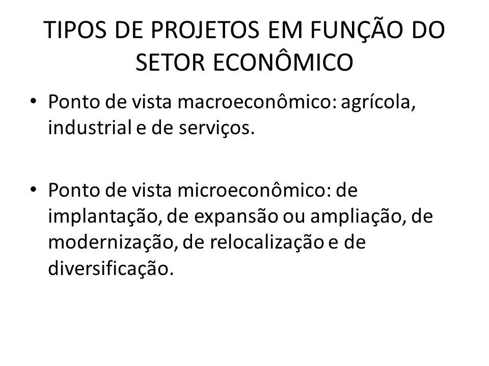 TIPOS DE PROJETOS EM FUNÇÃO DO SETOR ECONÔMICO