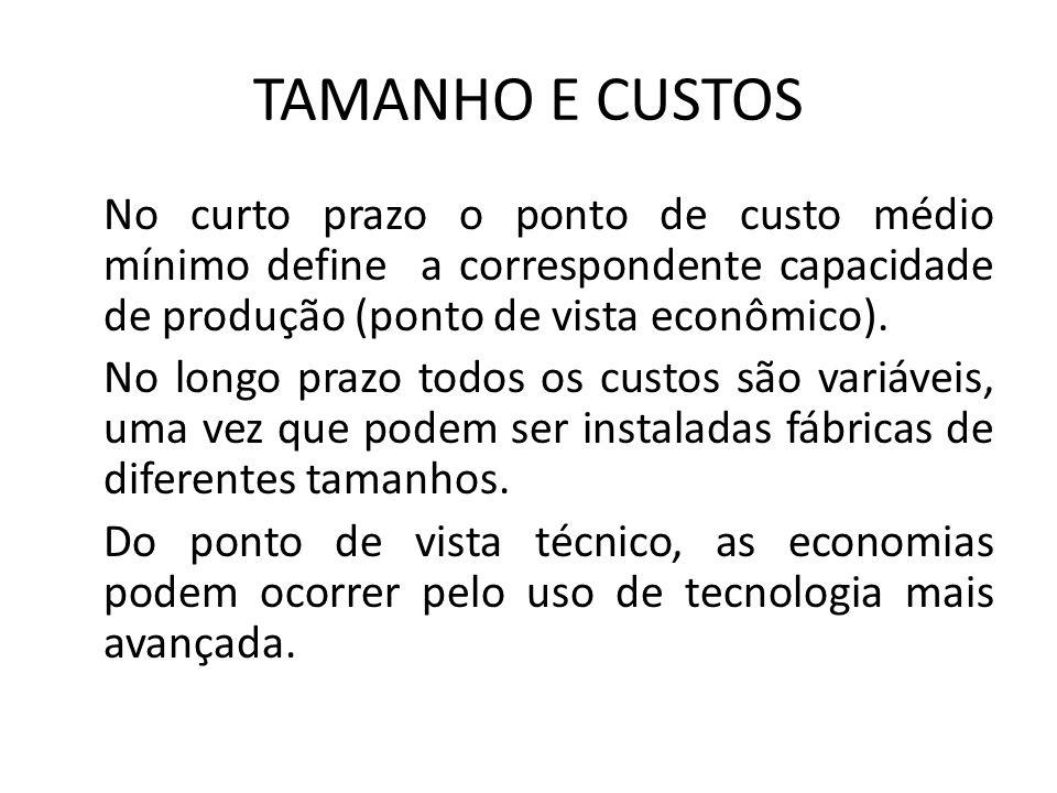 TAMANHO E CUSTOS