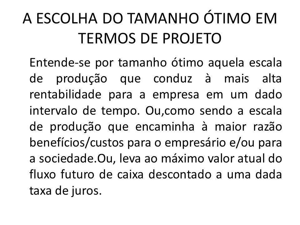 A ESCOLHA DO TAMANHO ÓTIMO EM TERMOS DE PROJETO