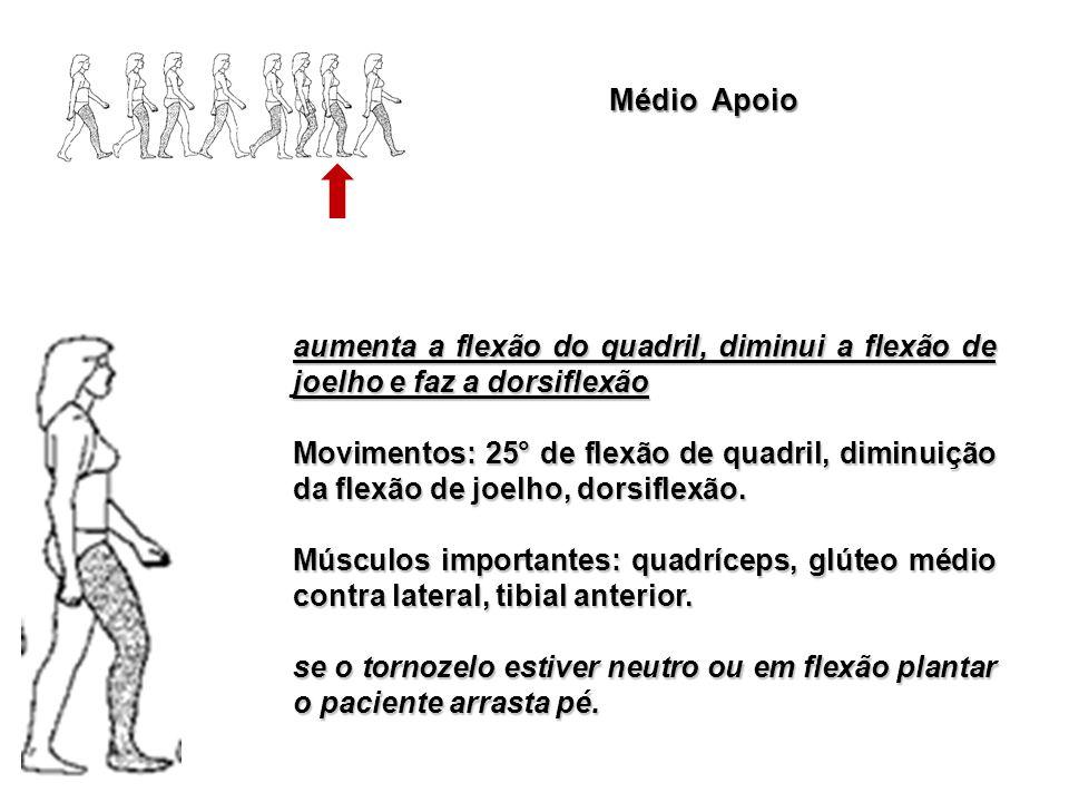 Médio Apoio aumenta a flexão do quadril, diminui a flexão de joelho e faz a dorsiflexão.