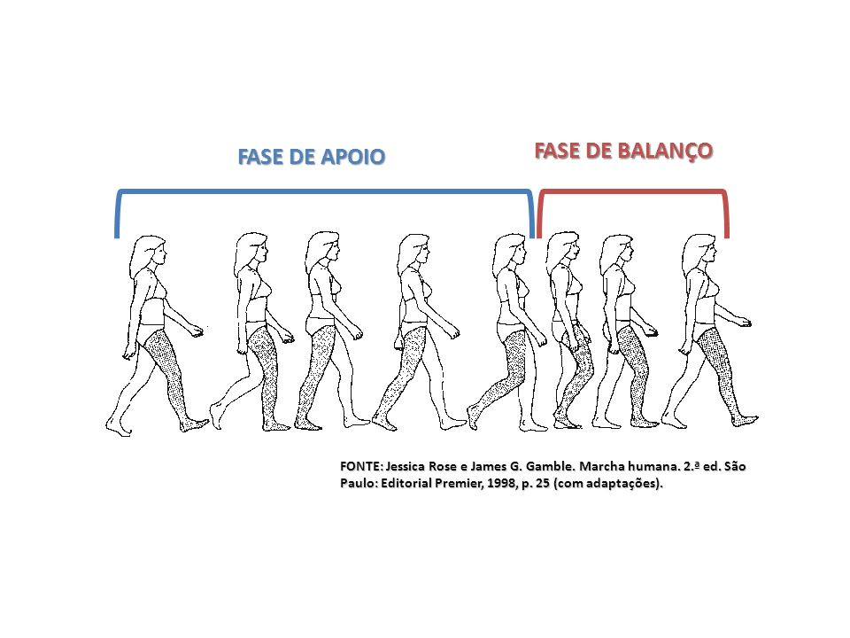 FASE DE BALANÇO FASE DE APOIO