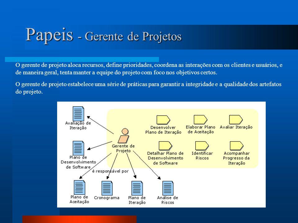 Papeis - Gerente de Projetos