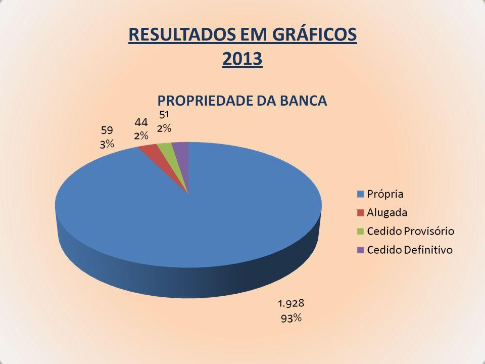 RESULTADOS EM GRÁFICOS 2013