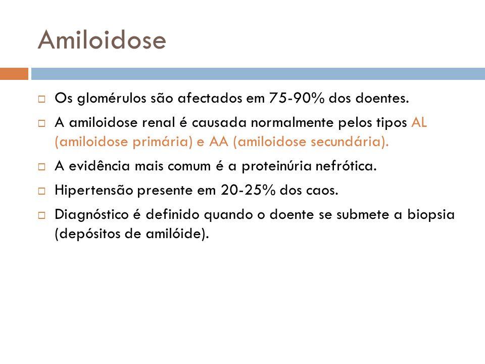 Amiloidose Os glomérulos são afectados em 75-90% dos doentes.