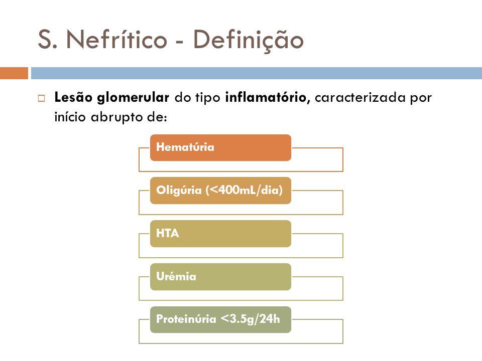 S. Nefrítico - Definição