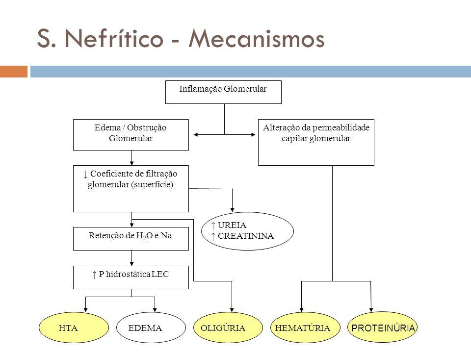 S. Nefrítico - Mecanismos