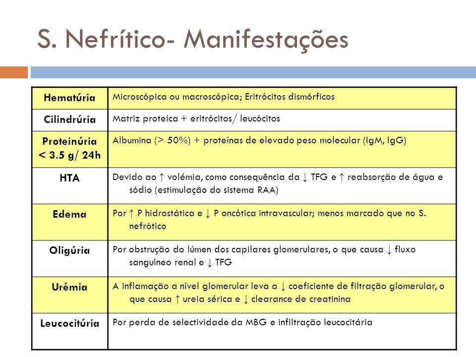 S. Nefrítico- Manifestações