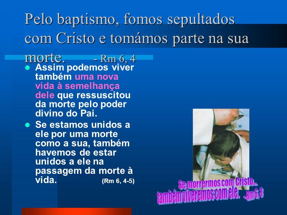 Pelo baptismo, fomos sepultados com Cristo e tomámos parte na sua morte. - Rm 6, 4