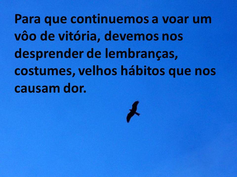 Para que continuemos a voar um vôo de vitória, devemos nos desprender de lembranças, costumes, velhos hábitos que nos causam dor.