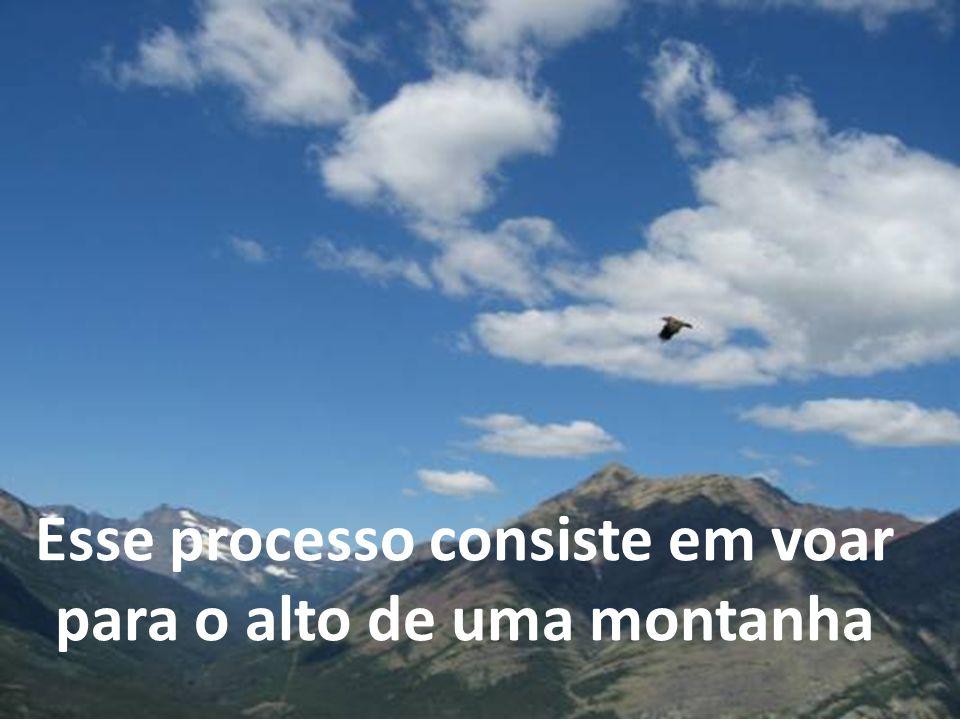 Esse processo consiste em voar para o alto de uma montanha
