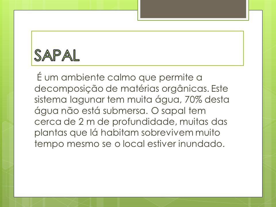 SAPAL