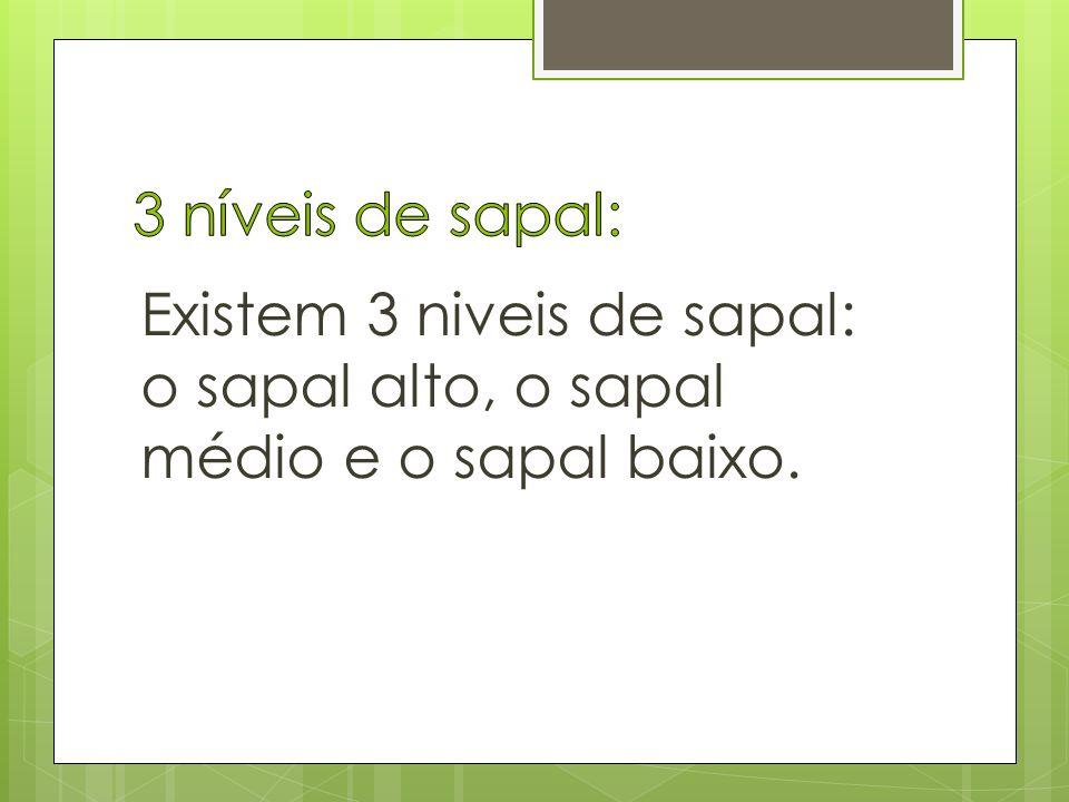 3 níveis de sapal: Existem 3 niveis de sapal: o sapal alto, o sapal médio e o sapal baixo.