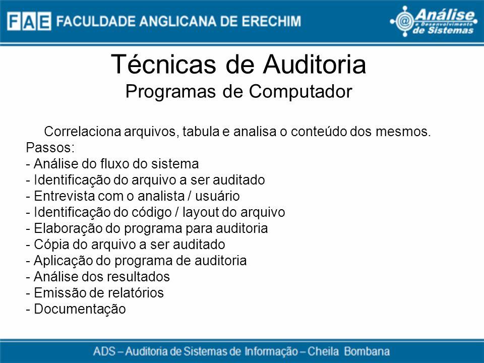 Técnicas de Auditoria Programas de Computador
