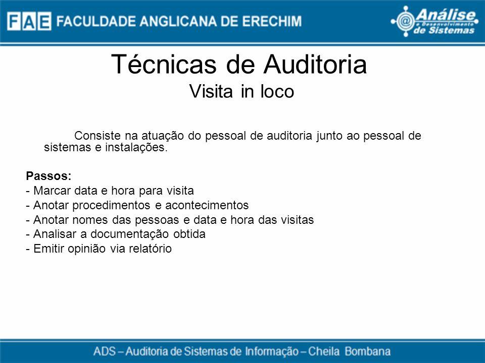 Técnicas de Auditoria Visita in loco