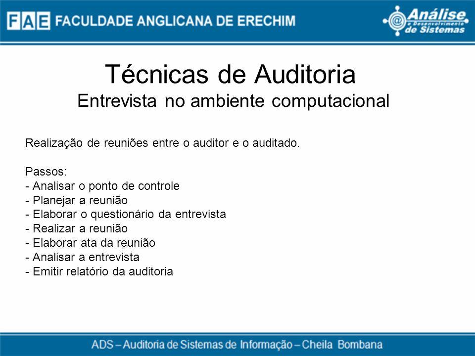 Técnicas de Auditoria Entrevista no ambiente computacional
