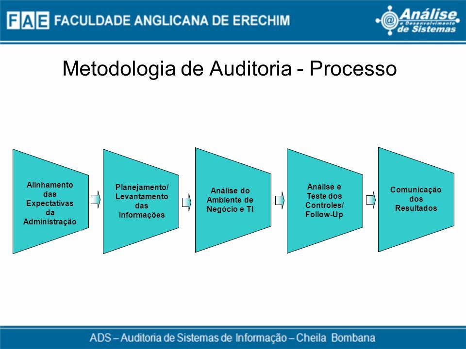 Metodologia de Auditoria - Processo