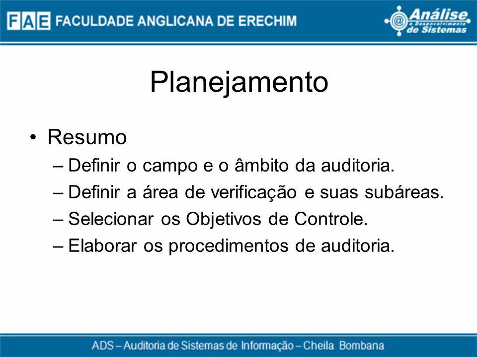 Planejamento Resumo Definir o campo e o âmbito da auditoria.
