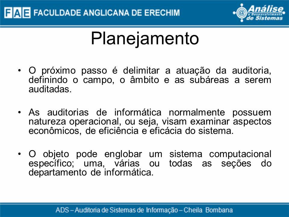 Planejamento O próximo passo é delimitar a atuação da auditoria, definindo o campo, o âmbito e as subáreas a serem auditadas.