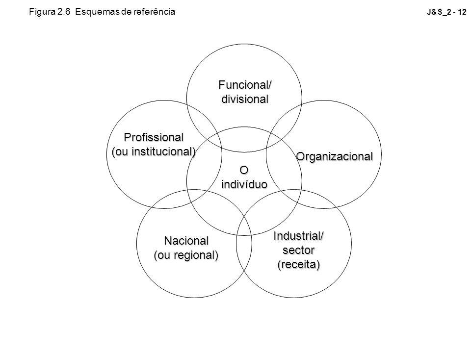 Funcional/ divisional Profissional (ou institucional) Organizacional O