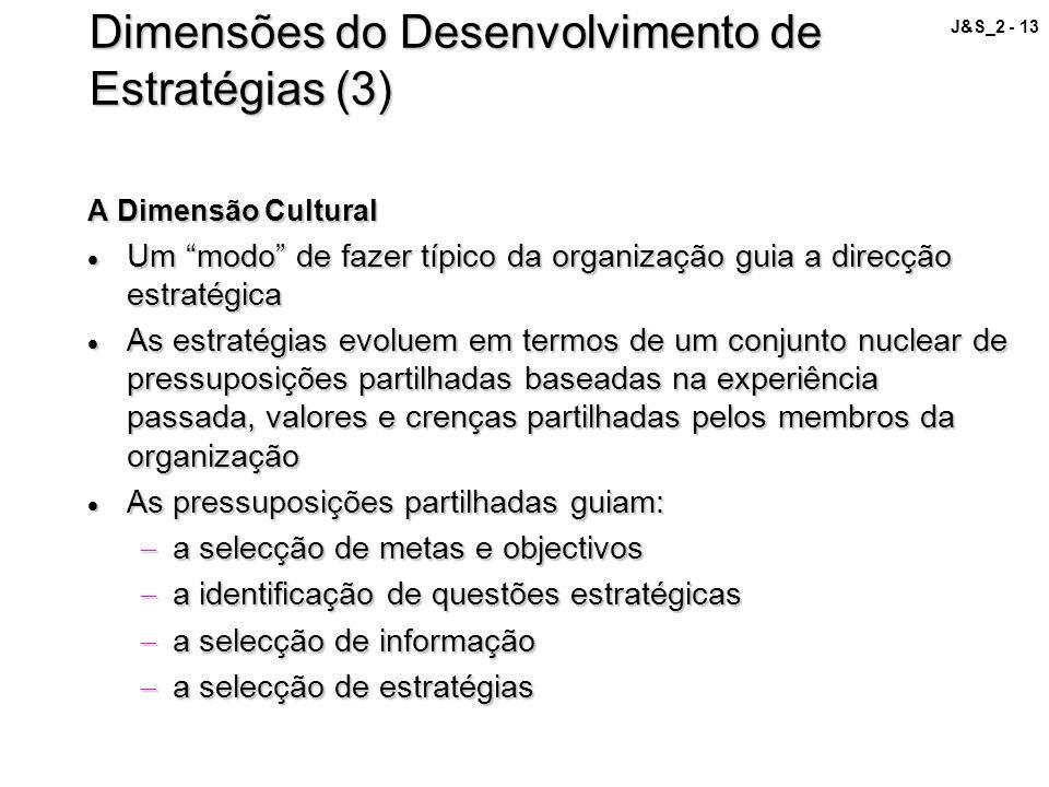 Dimensões do Desenvolvimento de Estratégias (3)