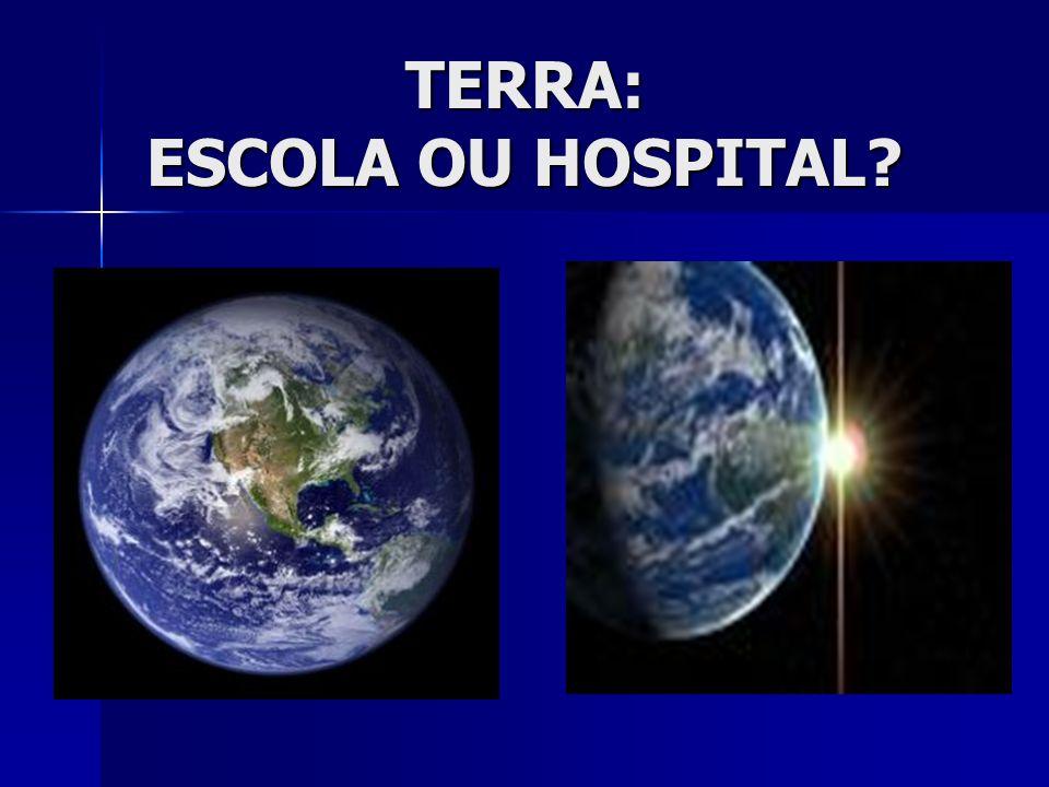 TERRA: ESCOLA OU HOSPITAL
