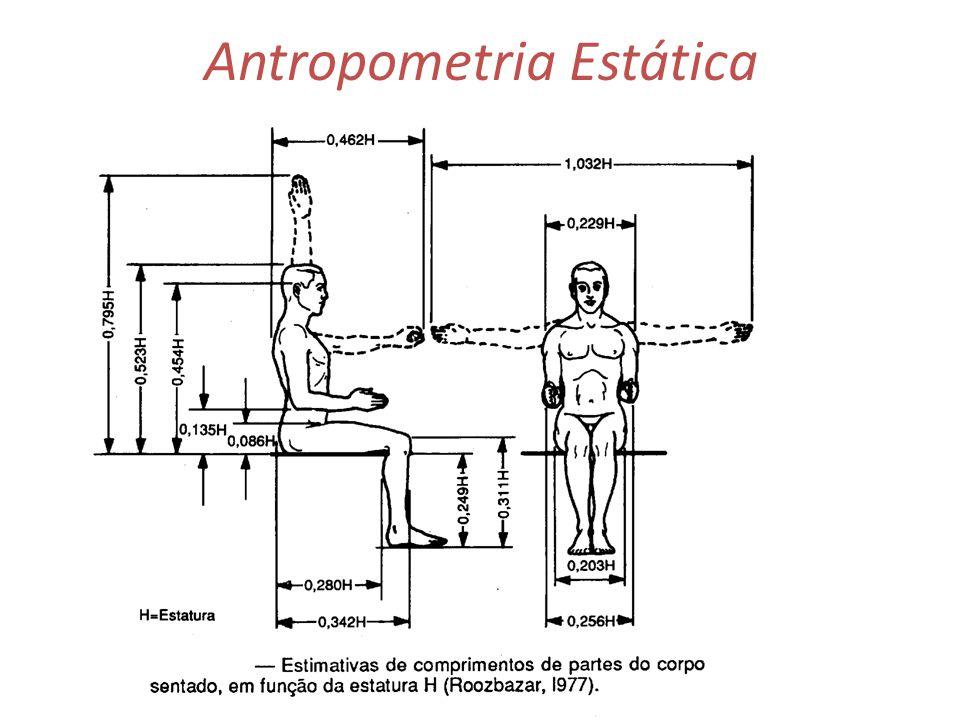 Antropometria trata das medidas f sicas do ser humano a for Antropometria de la vivienda