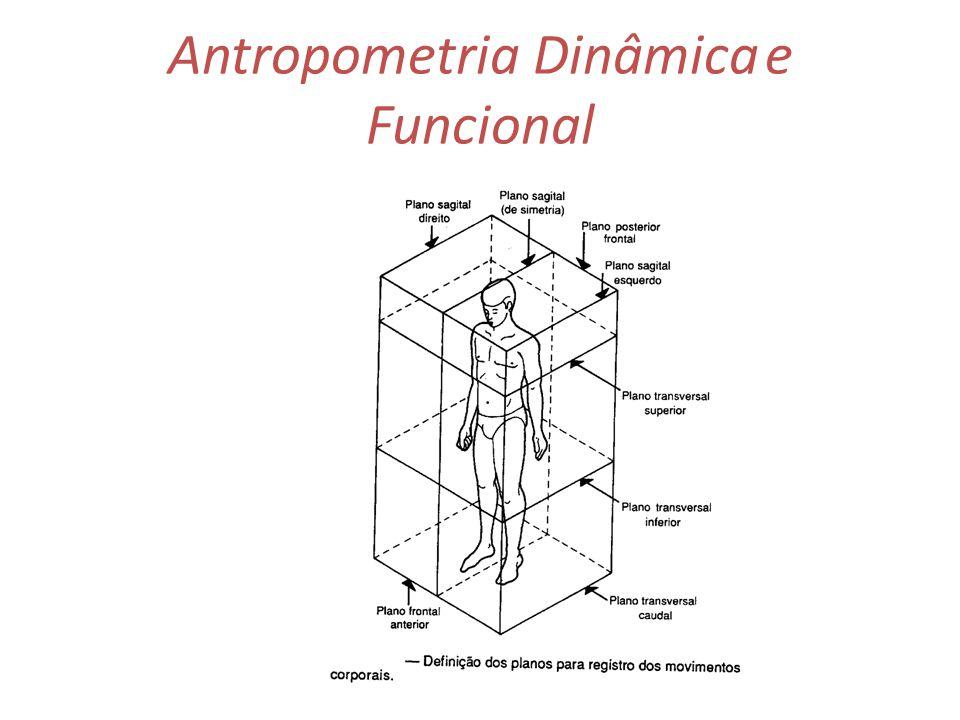 Antropometria trata das medidas f sicas do ser humano a for Antropometria medidas