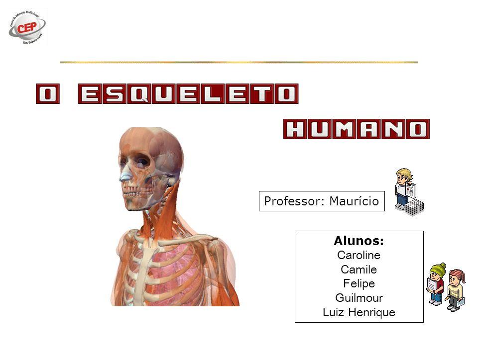 Professor: Maurício Alunos: Caroline Camile Felipe Guilmour Luiz Henrique