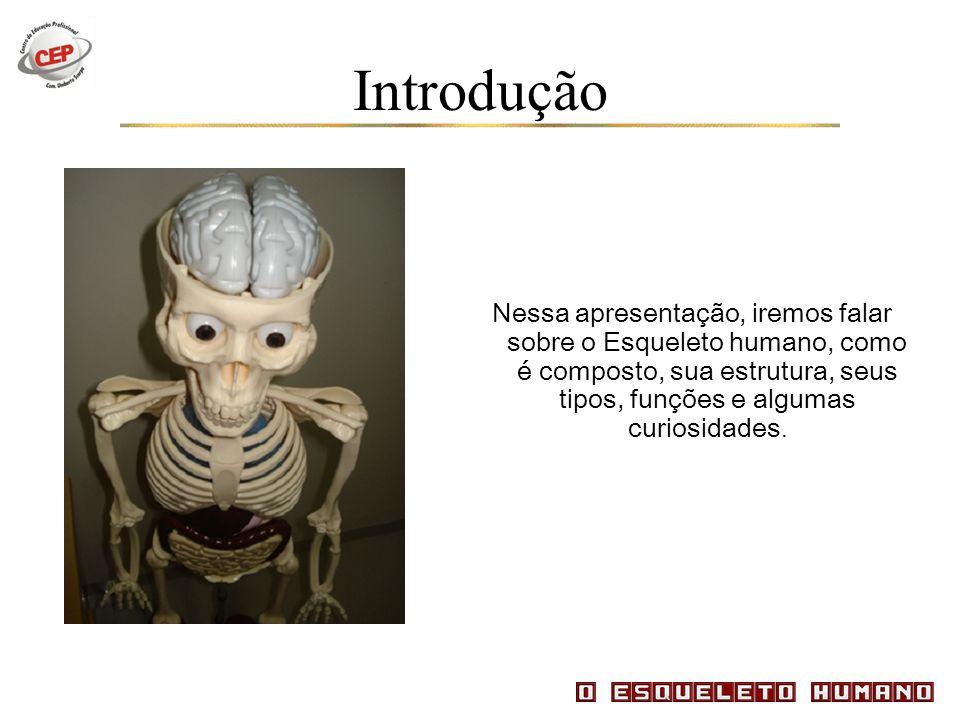 Introdução Nessa apresentação, iremos falar sobre o Esqueleto humano, como é composto, sua estrutura, seus tipos, funções e algumas curiosidades.