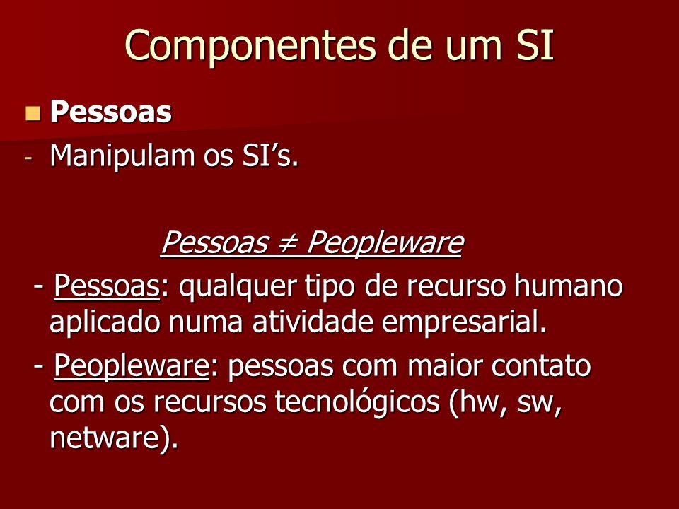 Componentes de um SI Pessoas Manipulam os SI's. Pessoas ≠ Peopleware