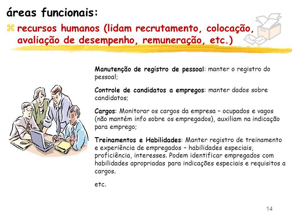 áreas funcionais: recursos humanos (lidam recrutamento, colocação, avaliação de desempenho, remuneração, etc.)