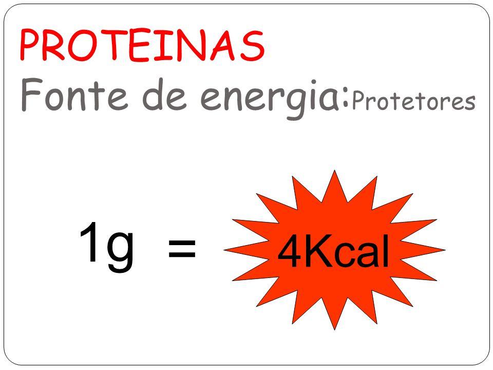 PROTEINAS Fonte de energia:Protetores