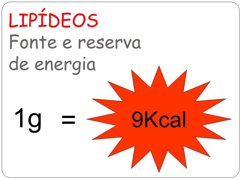 LIPÍDEOS Fonte e reserva de energia