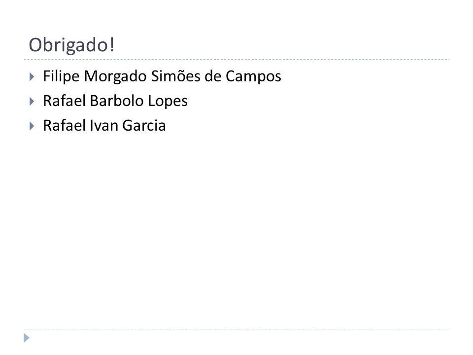 Obrigado! Filipe Morgado Simões de Campos Rafael Barbolo Lopes