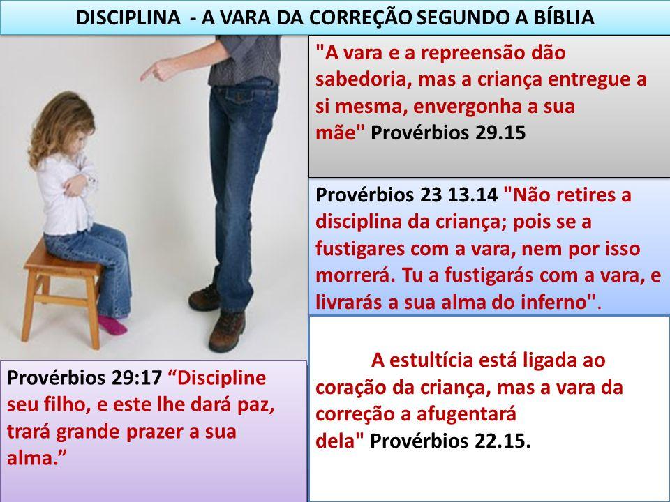 DISCIPLINA - A VARA DA CORREÇÃO SEGUNDO A BÍBLIA