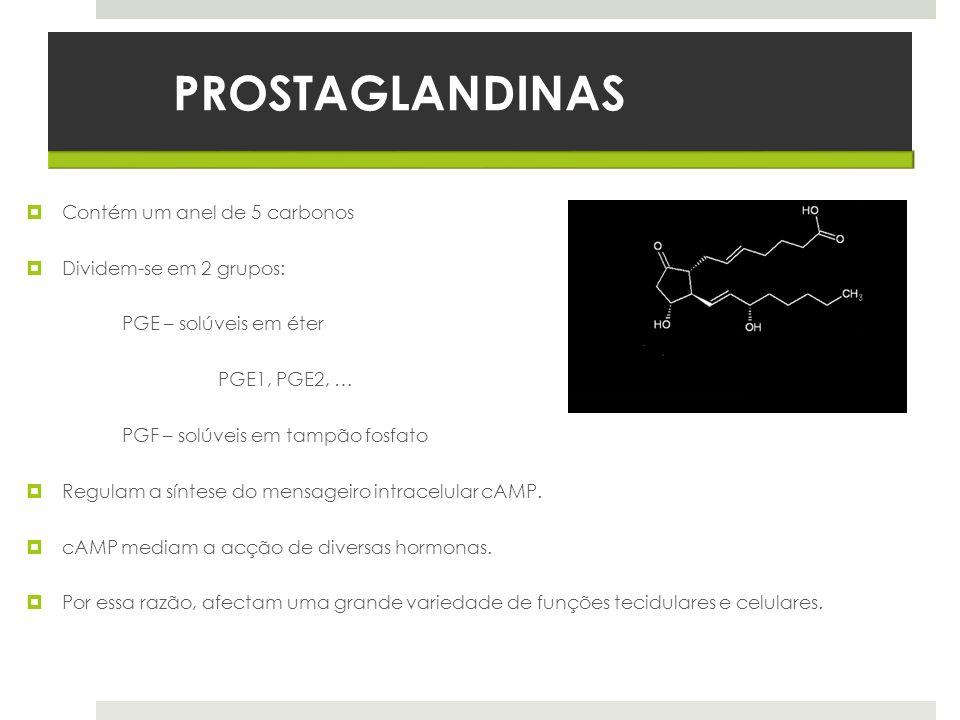 PROSTAGLANDINAS Contém um anel de 5 carbonos Dividem-se em 2 grupos: