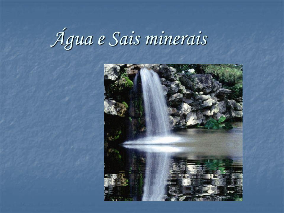 Água e Sais minerais