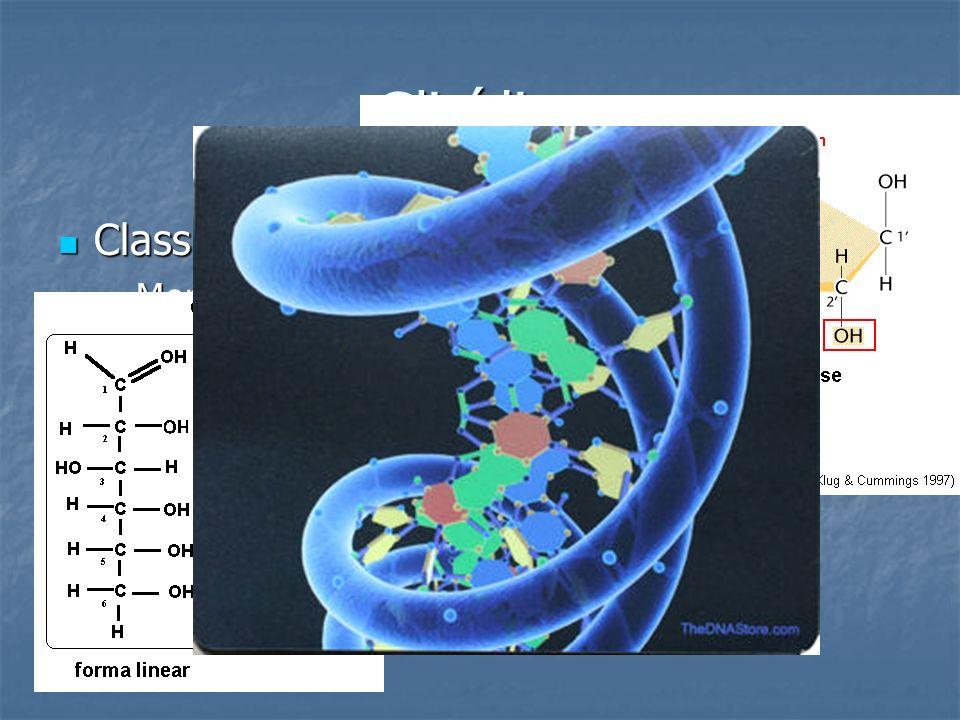 Glicídios Classificação Monossacarídeos