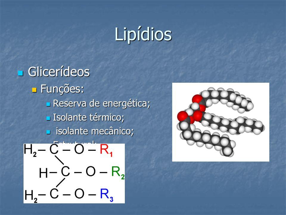 Lipídios Glicerídeos Funções: Reserva de energética; Isolante térmico;