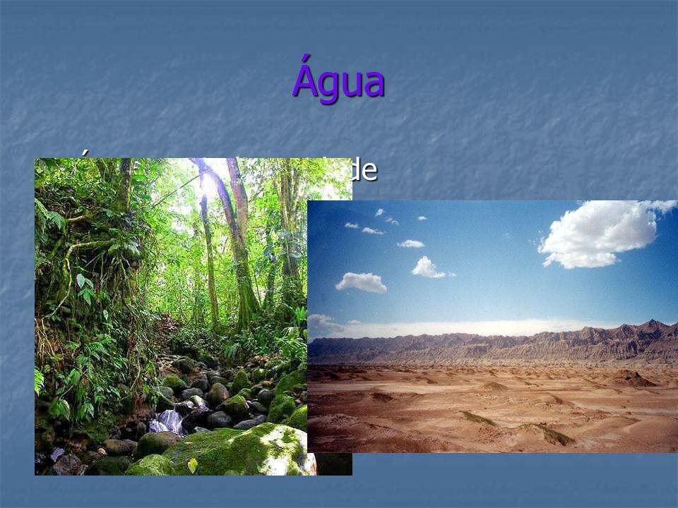 Água Água = Biodiversidade