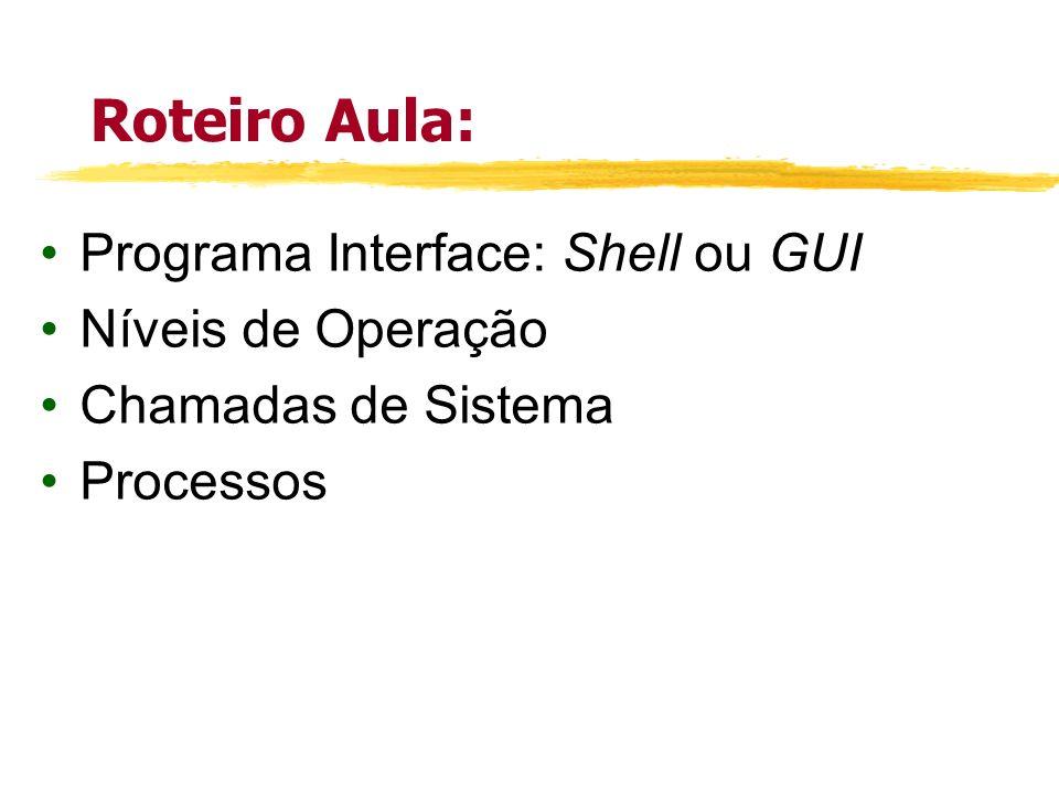 Roteiro Aula: Programa Interface: Shell ou GUI Níveis de Operação