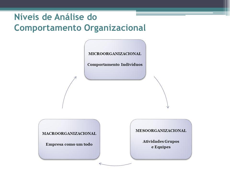 Níveis de Análise do Comportamento Organizacional