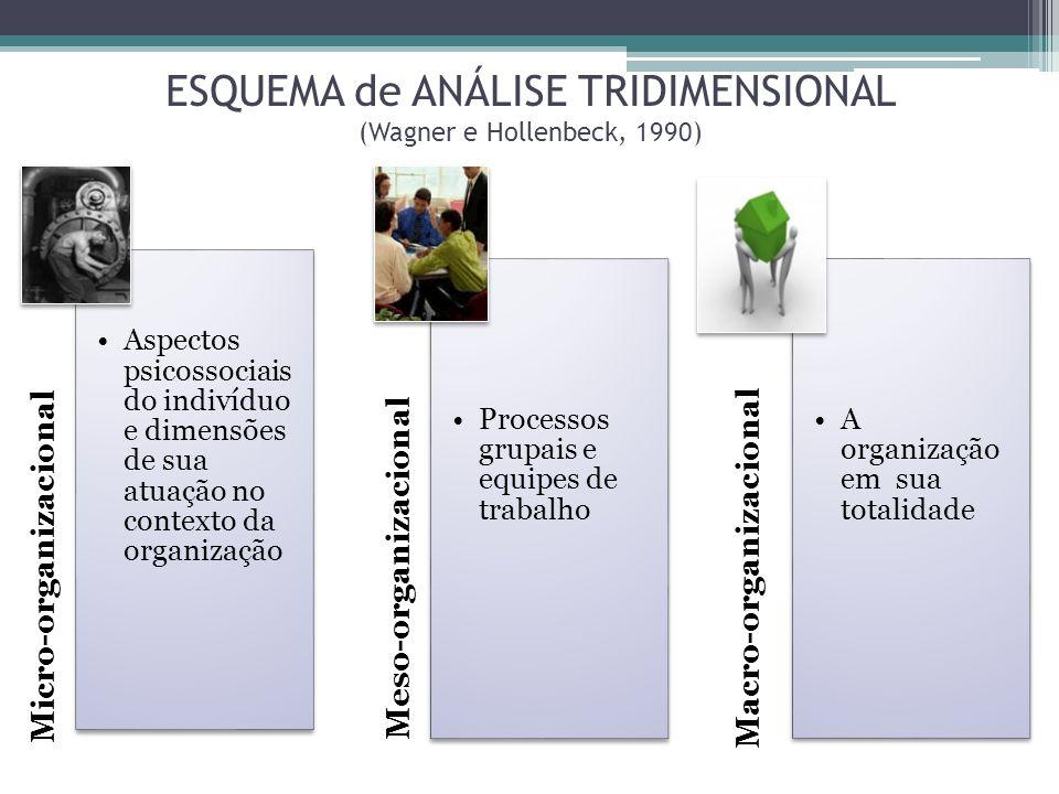 ESQUEMA de ANÁLISE TRIDIMENSIONAL (Wagner e Hollenbeck, 1990)