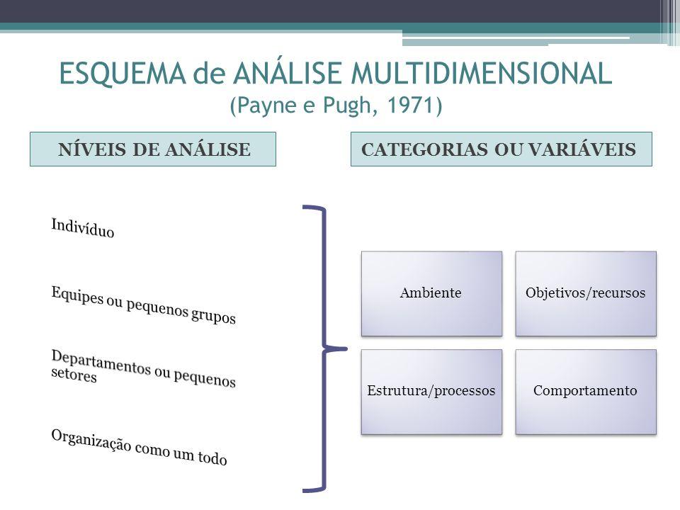 ESQUEMA de ANÁLISE MULTIDIMENSIONAL (Payne e Pugh, 1971)