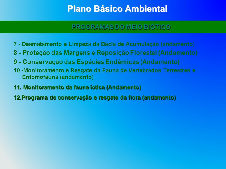 Plano Básico Ambiental PROGRAMAS DO MEIO BIÓTICO