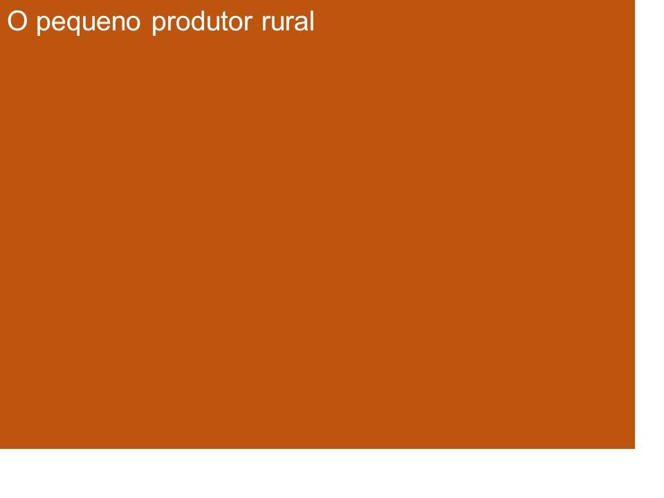 O pequeno produtor rural
