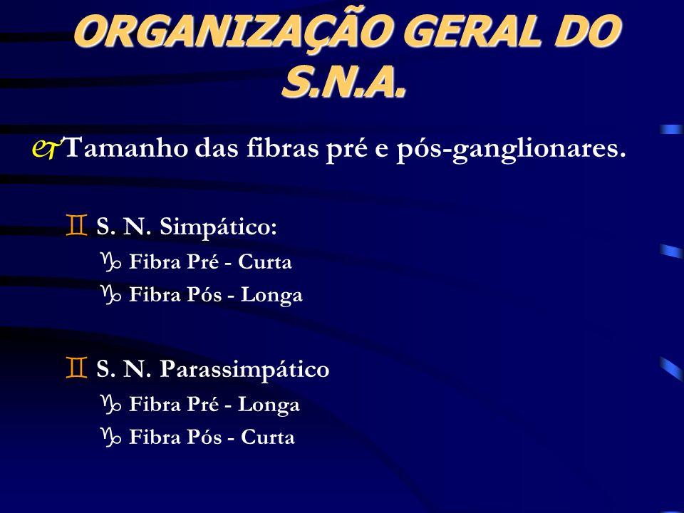 ORGANIZAÇÃO GERAL DO S.N.A.