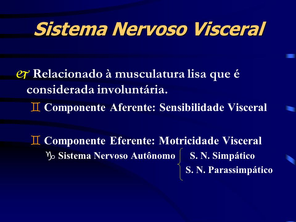 Sistema Nervoso Visceral