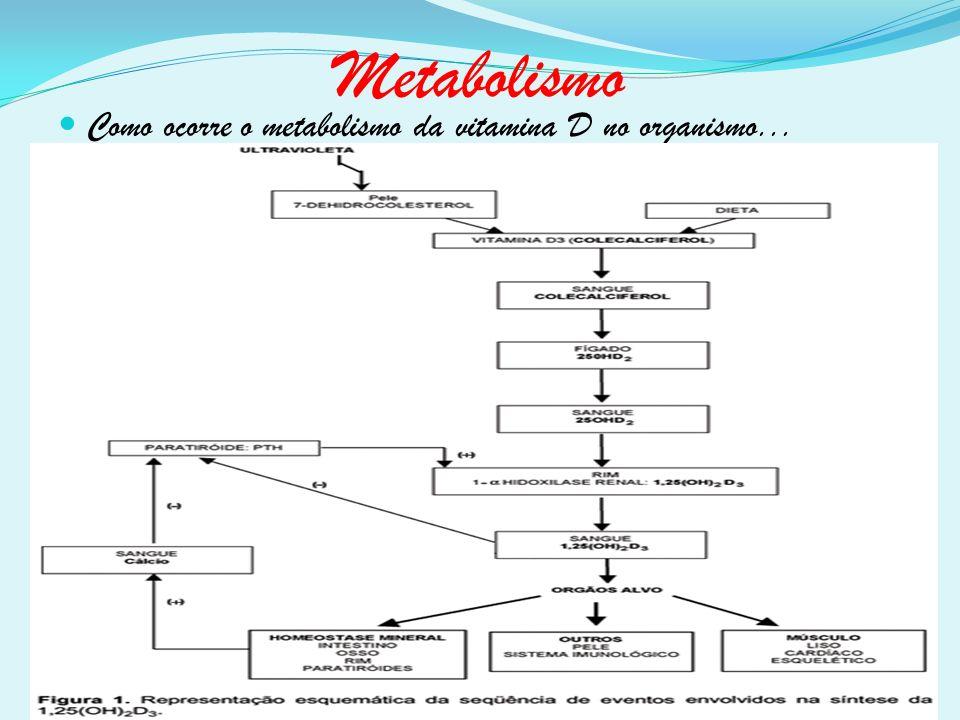Como ocorre o metabolismo da vitamina D no organismo...