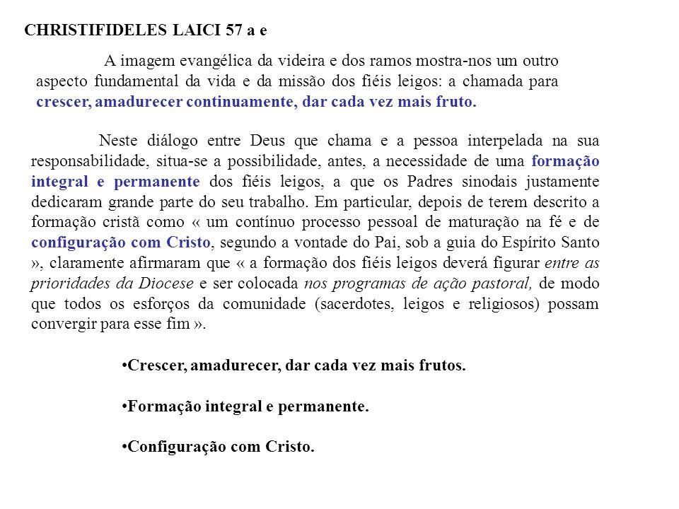 CHRISTIFIDELES LAICI 57 a e